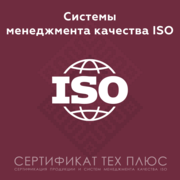 Сертификация систем менеджмента качества ИСО 9001 (СТБ, ГОСТ Р,  EN/DIN)